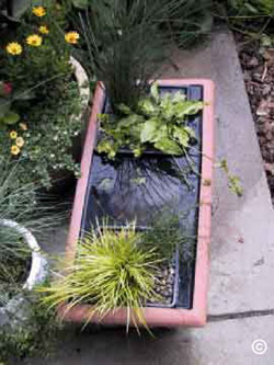 Top view of orange rectangular water garden with various potted plants