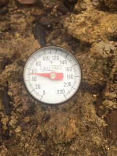 thermometer in soil